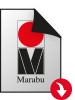pdf-file-format-symbol_MarabuGebinde