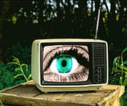 Organic-Auge-250
