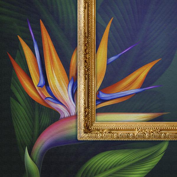 Imagin WW Canvas, Dekorationsfolie